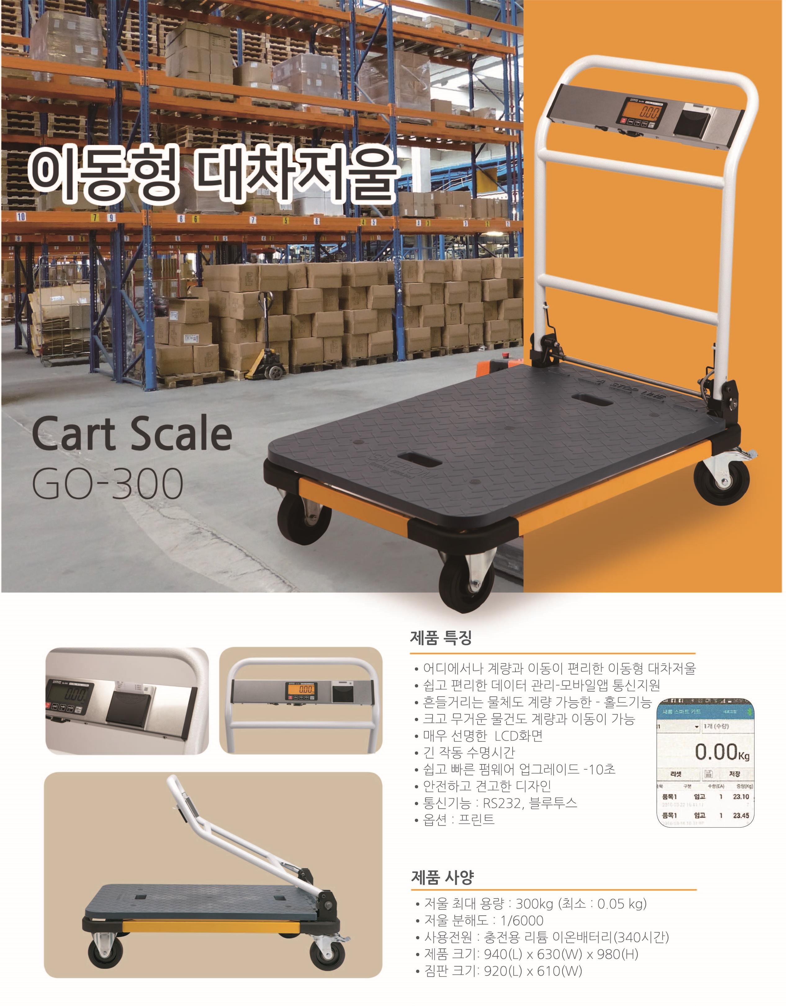 go-300-1.jpg